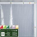 [1000円オフクーポンあり]ビニールカーテン 防炎 防虫 静電防止 UVカット 耐寒 耐候機能 0.5mm厚 【FT14】 幅201〜300…