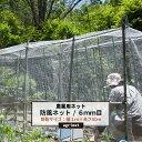 [期間限定10%OFF] 農業用ネット 6mm目 幅1m×長さ50m[防風ネット ワイドラッセル ネット 網 農業 園芸 家庭菜園 資材…
