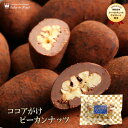 [プレゼント スイーツ ギフト 食べ物 洋菓子 高級 詰め合わせ 手土産 贈り物 ナッツチョコレート]ピーカンナッツ(ペカ…
