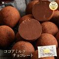 ココアミルクチョコレート(170g)