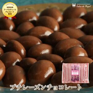 バレンタイン スイーツ プレゼント 食品 プチギフト チョコ お菓子 詰め合わせ お礼 洋菓子 手土産 個包装 セット ありがとう お世話になりました/プチレーズンチョコレート