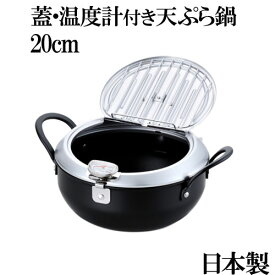 天ぷら鍋 ih ガス火対応 温度計付き 鉄製 蓋付き天ぷら鍋 20cm 日本製