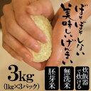 玄米 3kg【直送品】美味しいげんまい 3kg(1kg×3パック)