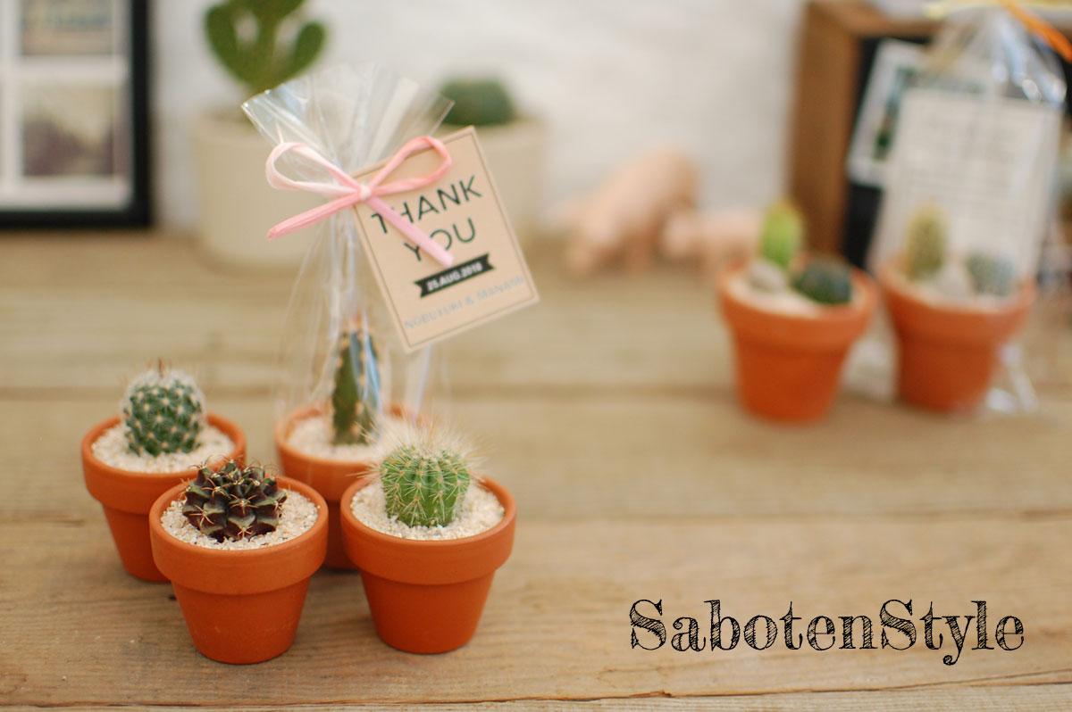 【サボテン・多肉植物 プチギフト/テラコッタ S】※30個からご注文下さい