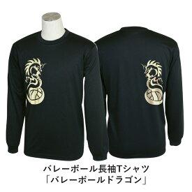 バレーボール 練習着 長袖 メンズ Tシャツ 「バレーボールドラゴン」 (ノースアイランド) NORTHISLAND