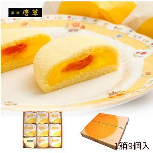 九州 長崎 土産 唐草 枇杷かすた物語 9個入 スポンジ ケーキ びわ 入り 3,980円以上 送料無料 枇杷 お土産