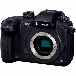 パナソニック(Panasonic) LUMIX(ルミックス)DC-GH5S ボディ ブラック DC-GH5S-K