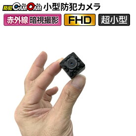 【クーポンで20%OFF】 小型カメラ 防犯カメラ 監視カメラ mc-mc100 【あす楽】