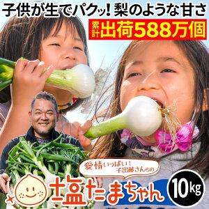 【6/11まで3550円】 TVで話題のたまねぎ 熊本県産 たまねぎ 10kg 塩たまちゃん 塩玉ちゃん 塩玉ねぎ 玉ねぎ サラダたまねぎ お取り寄せ お取り寄せグルメ 農家直送 送料無料