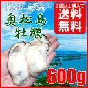 奥松島産 むき身牡蠣 600g(解凍後500g/粒前後)【瞬間冷凍】加熱しても縮まない濃厚でクリーミー牡蠣!【加熱用】【奥…