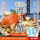 Watari s b101