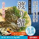 Watari01 m1