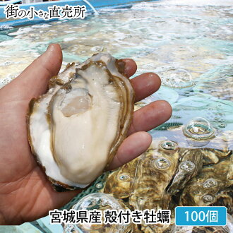 Miyagi oysters with shells 100 home party and BBQ ideal for gourmet Oyster oysters Gifts / Gift / spring blossom