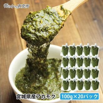 !Nothing addition, no coloration dirt sargasso (ぎばさ) 100 g *20 pack from Minamisanriku, Miyagi