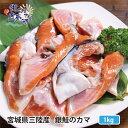 11月1日発送開始 送料無料 産地直送 三陸産 銀鮭カマ500g×2パック※1kg かま 焼き魚 さけ サケ