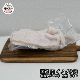 \F1イノブタ 背脂 3キロ ブロック/和歌山県 すさみ産 イブの恵み●業務用・プロ・ラーメン・隠し味・レストランご用達●極上の脂で料理の腕が上がります。ラードも作れる!