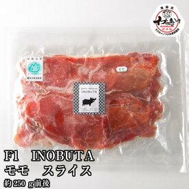 \F1イノブタ 肉 モモ スライス 250g / 和歌山県優良県産品プレミア和歌山・イブの恵み♪猪豚ってカラダにやさしいお肉なんです。ビタミンB1、B6が豊富で疲労回復効果。不飽和脂肪酸で血管を綺麗にする作用があります。【家計応援価格セール!期間延長!!】