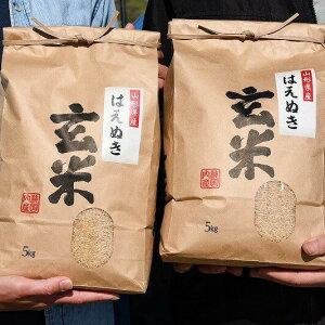 【2021年11月上旬発送】 山形県産 はえぬき 玄米 10kg(5kg×2袋) 限定50セット 送料無料 米 お米 新米 国産 【令和3年10月上旬より順次発送】