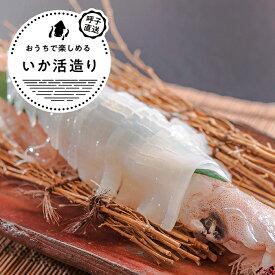 呼子剣先いか活造り 約180g×1P/そのままお刺身のほか、天ぷらにしてもおすすめ。一本釣りで丁寧に釣り上げた高級剣先いかの活き造り。