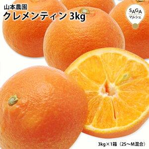 クレメンティン 3kg×1箱(2S〜M混合) 甘熟 みかん ミカン 蜜柑 希少フルーツ 贈り物 家庭用 ノーワックス
