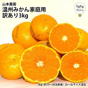 温州みかん家庭用訳あり3kg 温州 みかん ミカン 蜜柑 訳あり わけあり わけありみかん 温州みかん