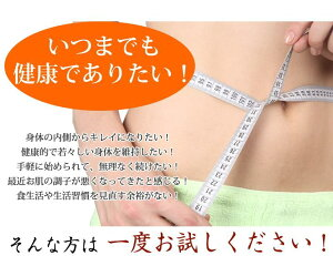 【送料無料】ごぼう茶国産送料無料ティーパック(2.5g×30包)ゴボウ茶牛蒡健康茶ダイエット茶