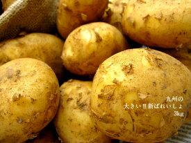 大きい!!!★新ばれいしょ【3kg】2L,3Lサイズ★鹿児島、長崎県産★皮が薄く、みずみずしいジャガイモです!!新じゃがいも★馬鈴薯★バレイショ★