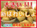 【期間限定】九州から届きました!!!デッカイ!!新ばれいしょ【3kg】3L〜2Lサイズ新じゃが●新馬鈴薯●鹿児島産●大きいじゃがいも●ポテト