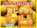 新じゃがいも鹿児島産 【ゴールド】 10kgL,Mサイズ混合★煮崩れしにくいゴールド芋です!!