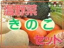 温野菜きのこセット