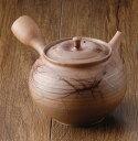 急須 常滑焼 北條作 藻掛 ささめ L58 | きゅうす おしゃれ 日本製 焼き物 伝統工芸 工芸品 作家 陶器 陶磁器 日本六古窯 愛知県 愛知 …
