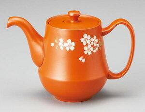 コーヒーサーバー 常滑焼 玉光作 珈茶ポット マイクロメッシュ 370cc M-411  きゅうす おしゃれ 日本製 コーヒーポット ティーポット 作家 陶器 日本六古窯 愛知県 食器 和食器 茶器 プレゼント