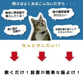 【あす楽対応】猫よけここダメシート2メートル巻【猫よけ対策猫よけグッズ猫除けシートマットセットイタズラ防止野良猫対策】