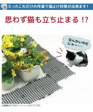 daim猫よけここダメシート2m巻ここだめシート猫よけ対策猫よけグッズシートマットセットイタズラ防止野良猫対策