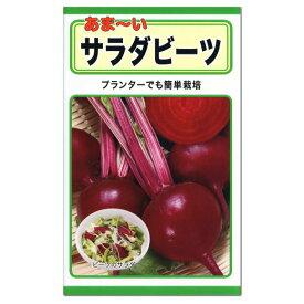 トーホク サラダビーツ 種 (家庭菜園・ビーツの種 ビート ボルシチ たね 種子 火焔菜 Beets)