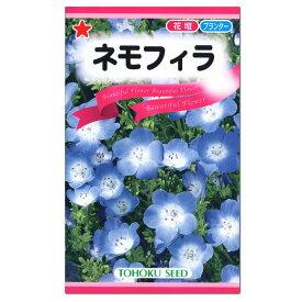 大人気!トーホク ネモフィラ 種 (花壇 プランター たね ガーデニング 種子 ルリカラクサ コモンカラクサ )