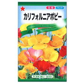 トーホク カリフォルニアポピー 種 一年草 (花壇 プランター 切花 たね ガーデニング ぐびじんそう 虞美人草)