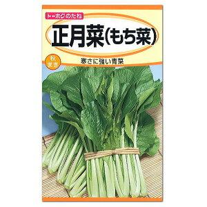 トーホク 正月菜(もち菜) 種(家庭菜園 青菜 ツケナ プランター栽培 種子 たね タネ)
