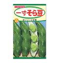 【秋まき】トーホク 一寸そら豆 種 ソラマメビールとの相性バツグンの大きなそら豆(家庭菜園・そらまめ・蚕豆 空豆…