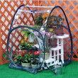 簡易温室ガーデンハウスSサイズ地面に固定できるペグ付き!6950(防風・防霜・ガーデニング・園芸・ビニールハウス)