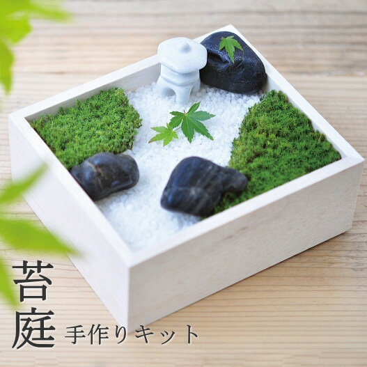 世界に一つだけの苔のお庭 苔庭園手作りキット 苔盆 (KOKEBON) (インテリア・おしゃれ・かわいい・こけ・コケ・ガーデニング・栽培キット 父の日 敬老の日)