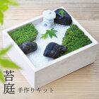 世界に一つだけの苔のお庭苔庭手作りキット(インテリア・おしゃれ・かわいい・こけ・ガーデニング・栽培キット父の日敬老の日)