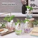 新製品!動物たちが水をくみあげて可愛いハーブが育つ ハングアニマルズ 選べる4種類!クローバー・ワイルドストロベリー・バジル・ミント(インテリアグリーン・おしゃ...