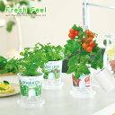 お洒落な野菜栽培キット フレッシュフィール 選べる6種類!ミニトマト・レタス・ラディッシュ・ベビーリーフミックス…
