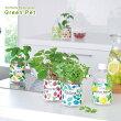 ペットボトル型底面給水栽培キット育てるグリーンペット選べる6種類!(インテリアグリーンかわいい家庭菜園)