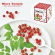 新製品!可愛い超小粒の実がなるマイクロトマト栽培キット(インテリアグリーンおしゃれかわいい野菜栽培セットガーデニングハートトマト家庭菜園母の日バレンタインホワイトデー)※近日入荷予定です