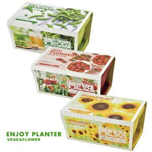 新製品!エンジョイプランター ベジ&フラワー 可愛いプランターで育てる栽培セット 選べる3種類!ミニトマト・エダマメ・ミニヒマワリ(インテリアグリーン おしゃれ かわいい 栽培キッ