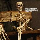 ハロウィン ボーンディスプレイ ガイコツクン 48cm Sサイズ(1238・1411 ホラー がいこつ スケルトン 骨 飾り 店…