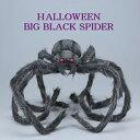 ハロウィン ビッグブラックスパイダー (HW1710 パーティ 衣装 コスプレ 飾り 店舗 装飾 くも クモ 蜘蛛 )