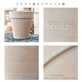 専門店の寄せ植えギフト【テラコッタ】選べる雰囲気寄植えテラコッタ鉢送料無料